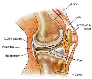 ezoterikus ízületi duzzanat hát- és csípőfájdalom kezelése