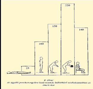 Porckorong-előboltosulás és -kiboltosulás