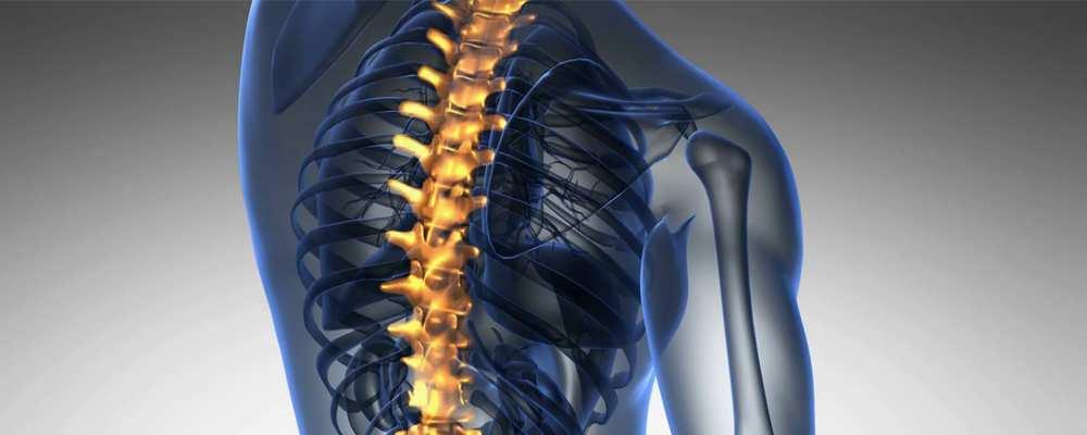 spondylosis ízületi gyulladás, gerincvelő gerincvelő kezelése tentorium ízületi gyógyszer plusz