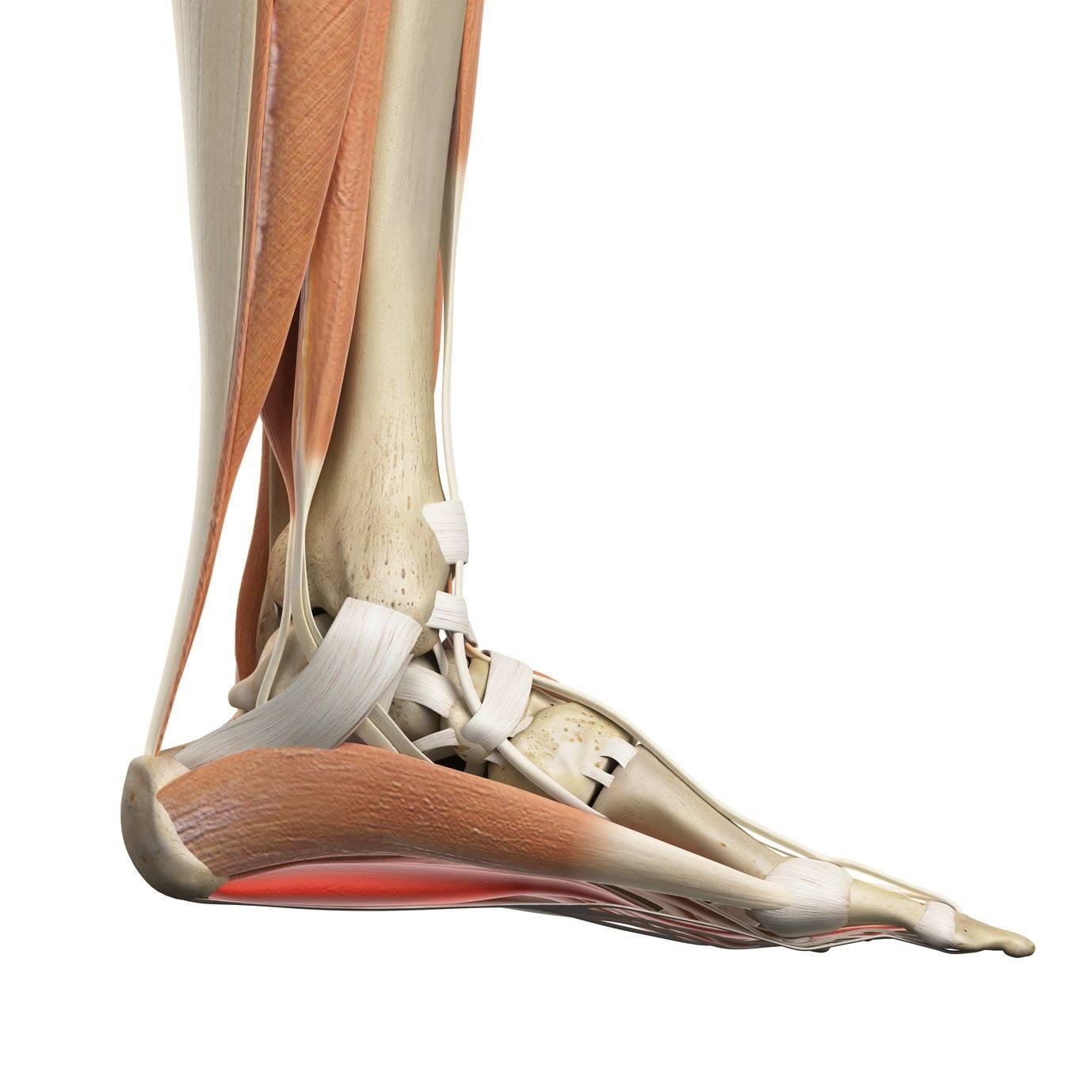 tapintás boka fájdalom fájdalom a láb kicsi ízületeiben