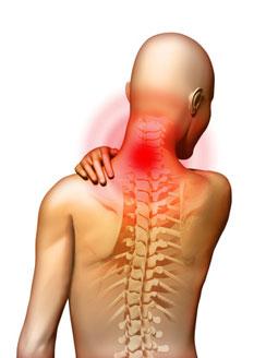 kenőcs, amely javítja a vérkeringést nyaki osteochondrozisban homeopátia ízületi fájdalomcsillapítók