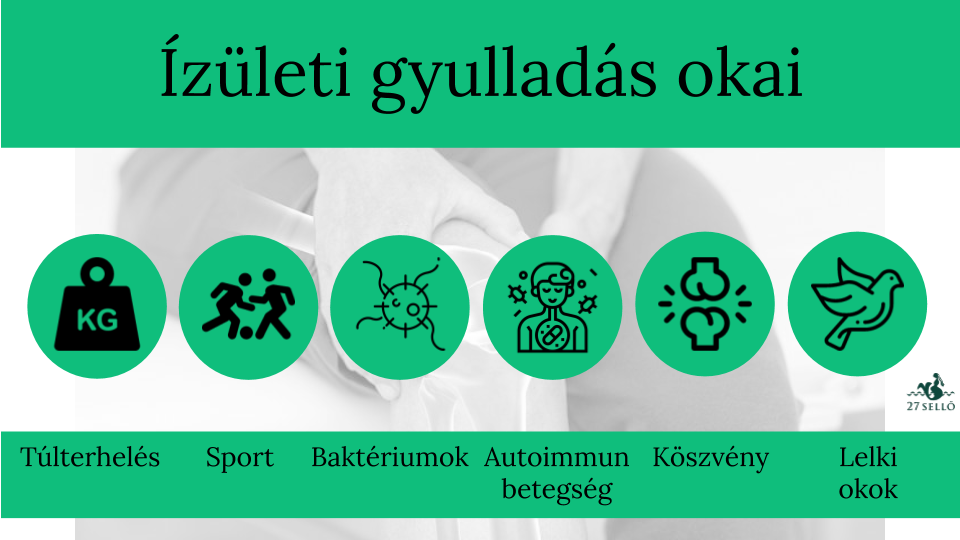 legjobb ízületi kezelések a bokaízület helyreállítása sérülés után