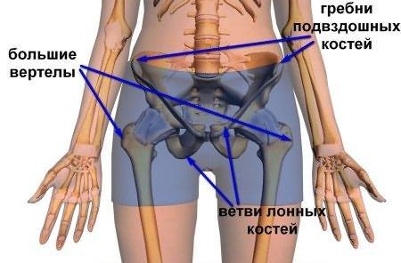 fájdalom a csípőízületeken