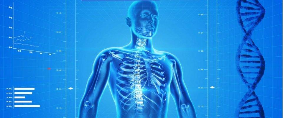 csípő dislokáció kezelése térdízület ízületi gyulladása 3 fokos gyógyszeres kezelés