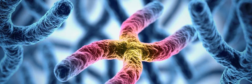 örökletes kötőszöveti betegségek hogyan lehet érzésteleníteni a térdízület ízületi fájdalmait