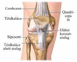 mentő a térdízületek fájdalmainak kezelésére