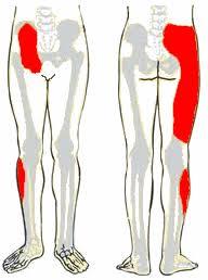 artrózis kezelési ajánlások a térd izmainak káros kezelése