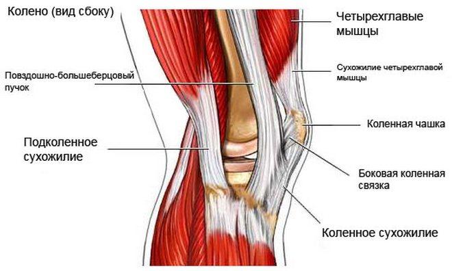 a könyökízület akut, gennyes ízületi gyulladása fájdalom a térd meniszkuszának károsodásával