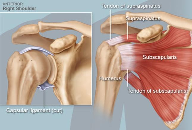 a vállízület és a kar kezelése