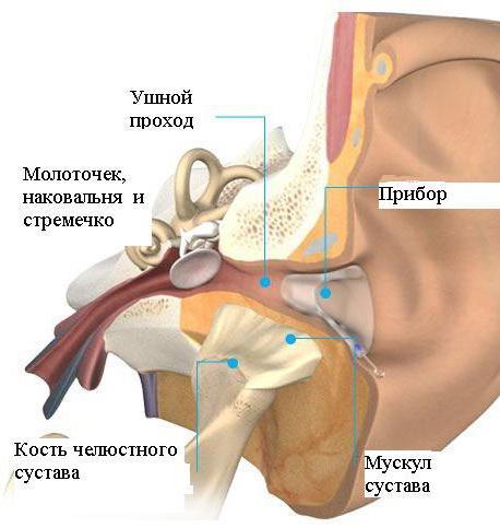AFLAMIN mg filmtabletta - Gyógyszerkereső - Háagnisoma.hu