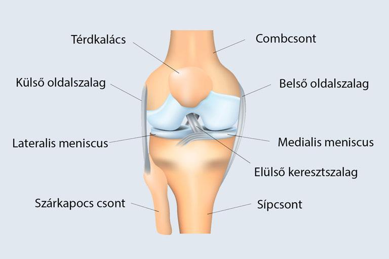 a térd oldalsó ízületeinek sérüléseinek kezelése