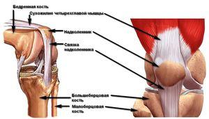 Kalcium lerakódás - Arthritis July