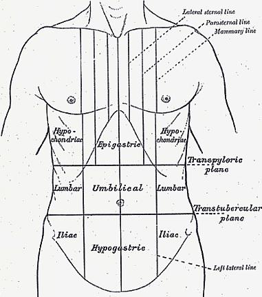 derékfájás hasi fájdalommal krém kenőcs ízületi fájdalmak kezelésére