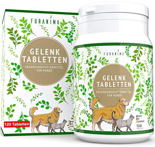Vitaking ® Kollagén por (epres) + Glükozamin, Kondroitin, MSM