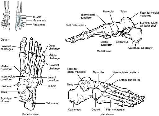 fájdalom a lábujjak és a bokák ízületeiben