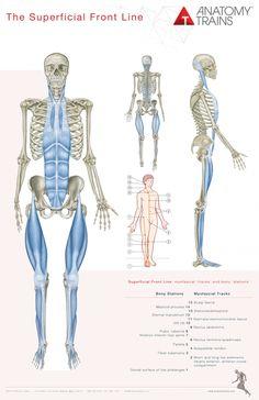 közös terápiás plazmoterápia lábfájdalom a csípőben, mint hogy kezeljék