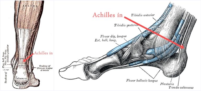 a bal térdízület osteoarthritis kezelése