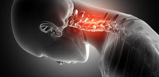 térd osteoporosis betegség