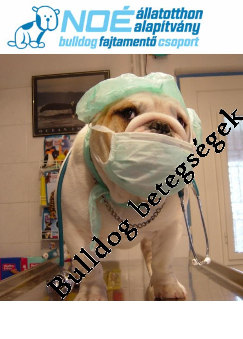 A francia bulldog betegségei