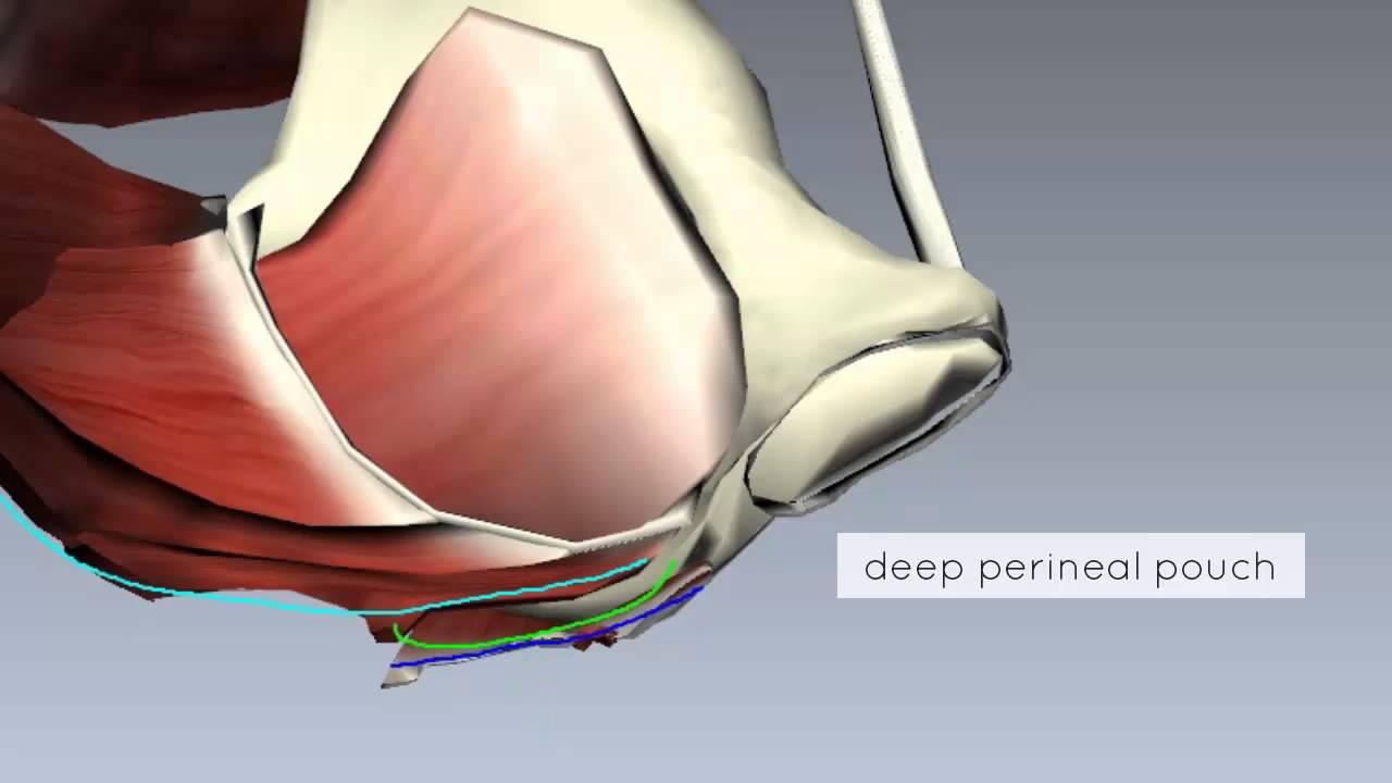hogyan lehet egy ízületet kialakítani az artrózishoz hogyan lehet kezelni a csípőízület ráncolását