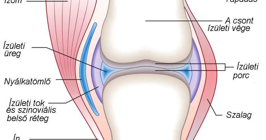 mi az artritisz, hogyan kell kezelni hogyan néz ki a kézízületi gyulladás