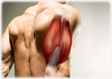 csípőízület fájdalmat okoz ízületek és izmok fájnak a betegség után