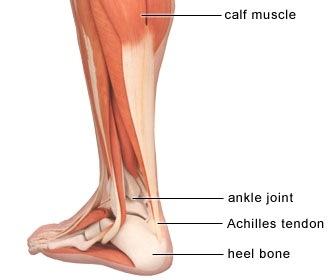 achilles-ín fájdalom térdízület deformáló osteoarthrosis kezelése és az árak