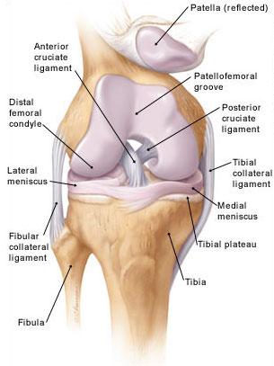 izmok és ízületek akut fájdalma synovitis térdfájdalom