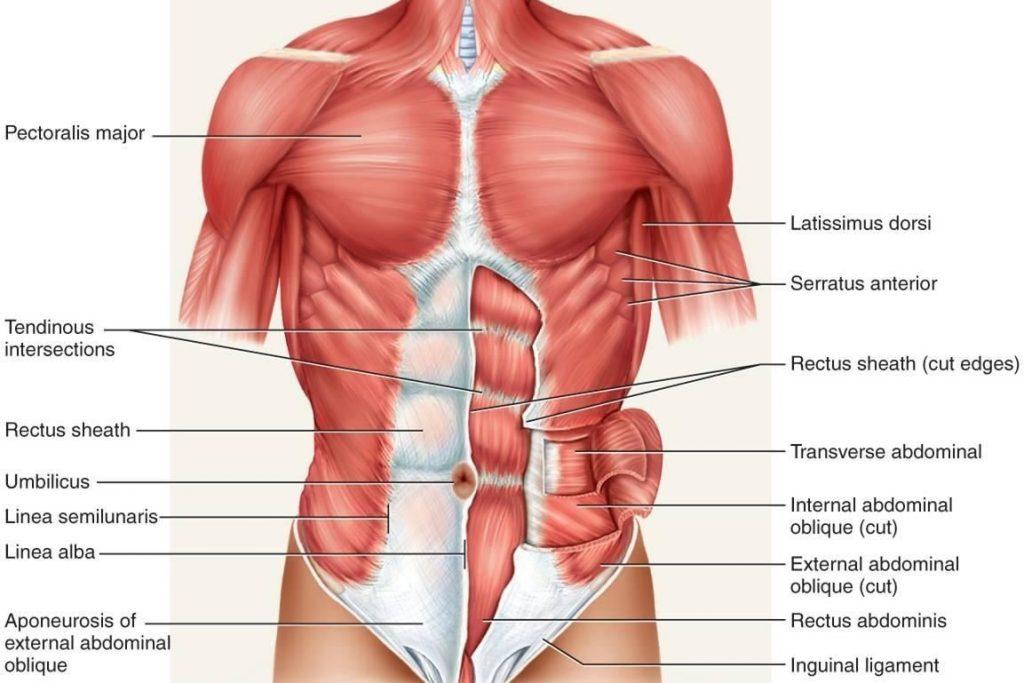 a csípőízületektől sugárzó derékfájás duzzadt és nehéz lábak kezelése