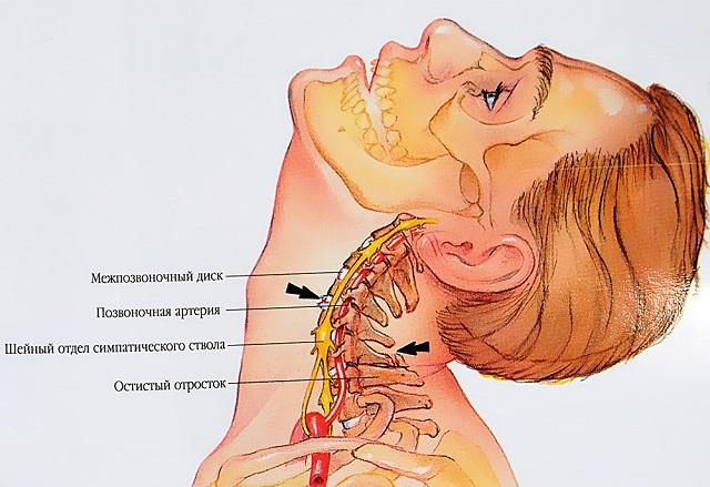 a gerinc fáj és ízületek
